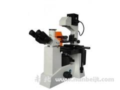 BM-38X倒置荧光显微镜