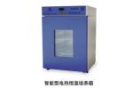 DHP-9160B智能型电热恒温培养箱