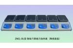 ZNCL-DL智能六联磁力加热板(陶瓷面板)