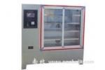 YH-42B新式标准恒温恒湿养护箱