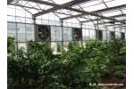 阳光房人工气候室
