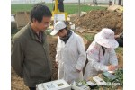 FDS-100土壤水分/湿度传感器