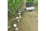 SY-HSD多点土壤水分速测