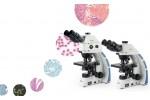 EX31生物显微镜